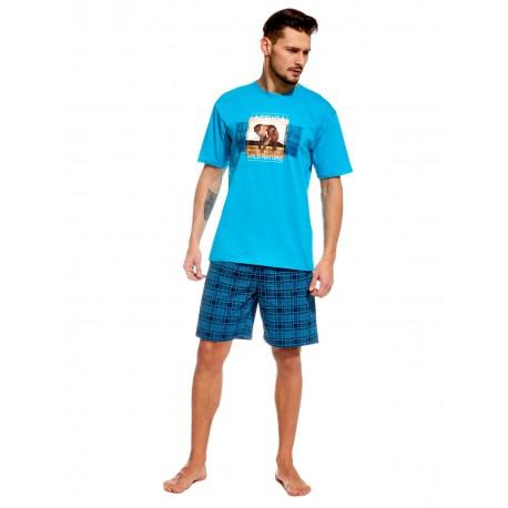 Piżama męska Africa 326/52 krótka, turkusowa